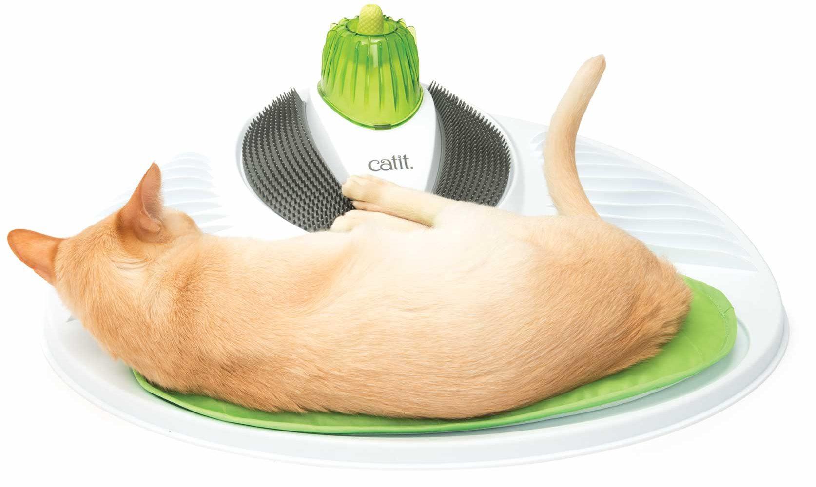wellness-broad-cushion
