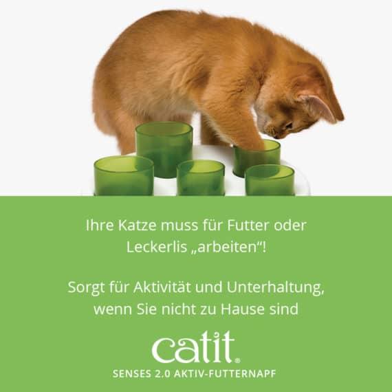 """Catit Senses 2.0 Aktiv-Futternapf - Ihre Katze muss für Futter oder Leckerlis """"arbeiten""""! Sorgt für Aktivität und Unterhaltung, wenn Sie nicht zu Hause sind"""