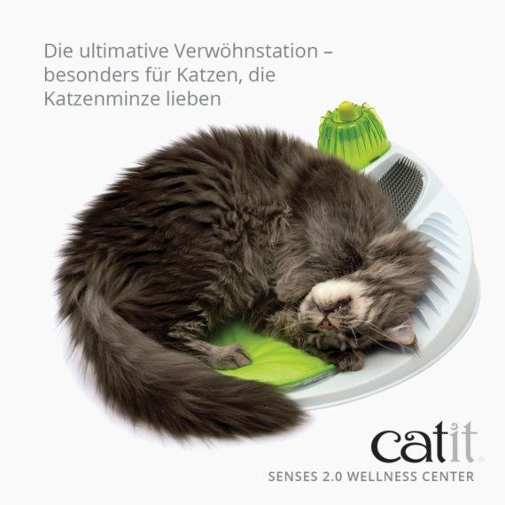 Catit Senses 2.0 Wellness Center - Die ultimative Verwöhnstation – besonders für Katzen, die Katzenminze lieben