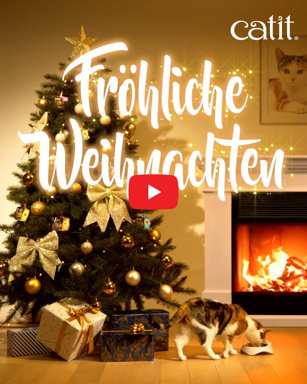 Fröliche Weinachten Video